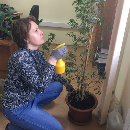 Ольга Александровна Климова - за озеленение